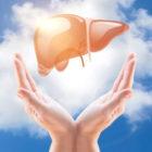 Поддержка печени - это ключ к лечению щитовидной железы
